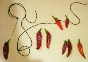 pepper-stringing (2)