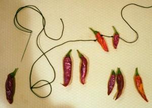 pepper-stringing (2)