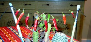 peppers,strung2 (2)
